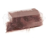 Plumes - Naturelles - Décoration - Table - 10/15cm - 30g CHOCOLAT