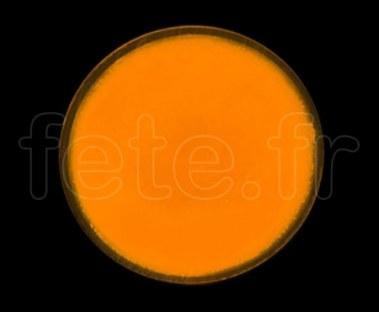 SPOT ROND - Fluo - Ø 47mm - Adhésif -